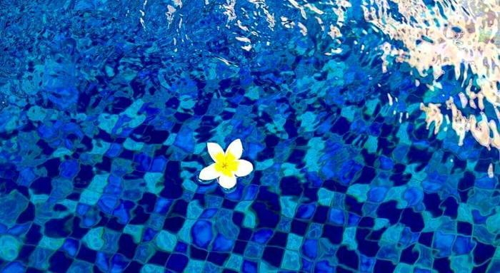 Coco De Heaven Bali -  Pemandangan
