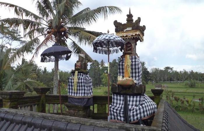 Ala's Green Lagoon Bali - Eksterior