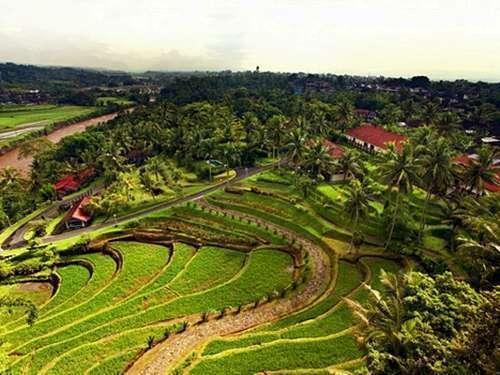 Hotel Puri Asri Magelang - View
