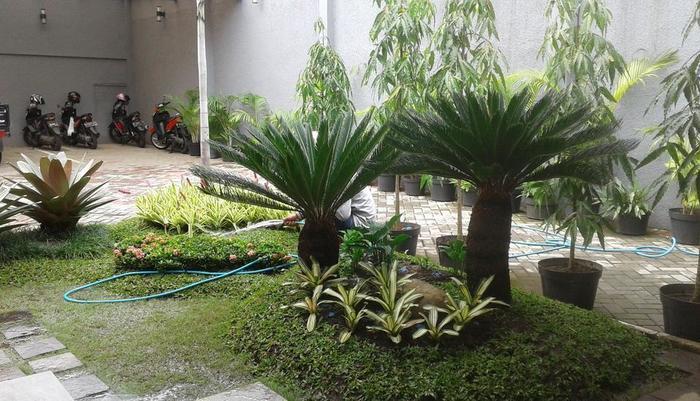 Kuwera Inn Guest House Bandung - Garden