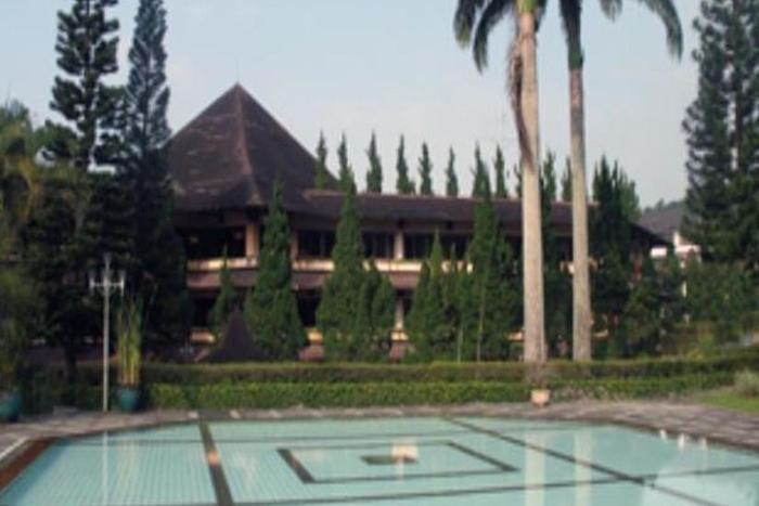 Queen Garden Hotel Purwokerto - Kolam Renang
