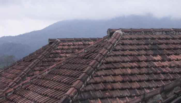Homestay Ngadas Malang - 3
