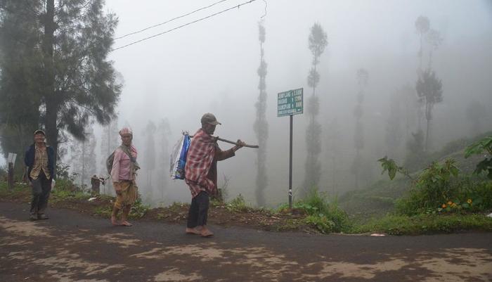 Homestay Ngadas Malang - o1