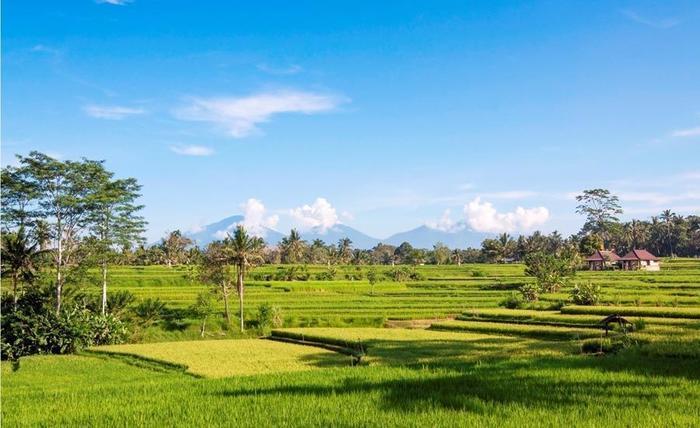 The Lokha Ubud - Entrance