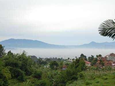 The Green Forest Resort Bandung - View