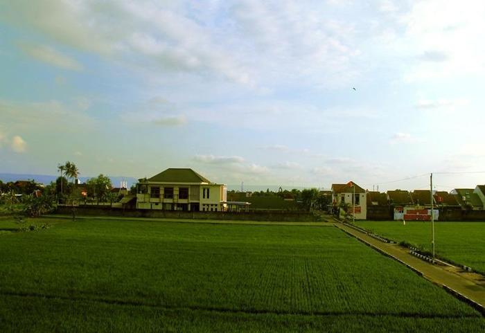 Artha Guest House Yogyakarta - Pemandangan