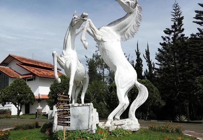 Berlian Resort Cianjur - Masuk