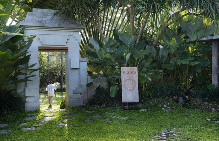 Planta Luxury Villa Canggu Bali - Eksterior