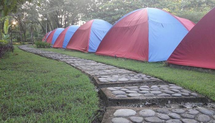 Green Coral Beach Camping Ground Tanjung Lesung Pandeglang - Jalanan