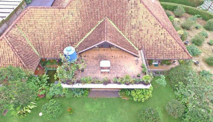 Villa Bunga Merah Gelatik Gelatik - Vila View