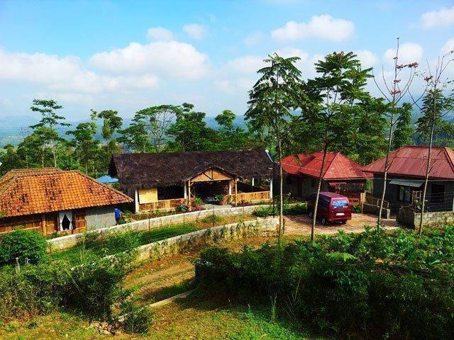 Sendangsari Bamboo Homestay Wonosobo - Pemandangan