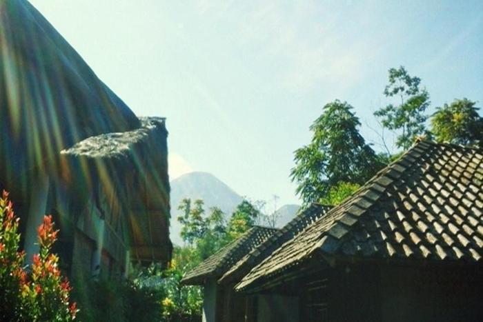 Sendangsari Bamboo Homestay Wonosobo - Eksterior