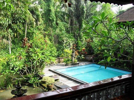NIDA Rooms Ubud Kajeng Bali - Kolam Renang