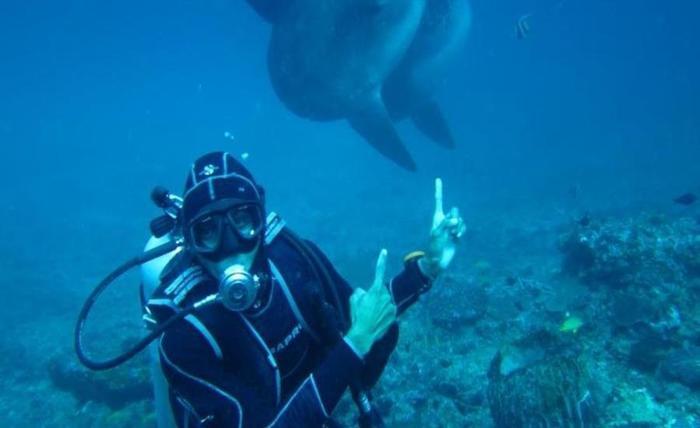 Scooby Doo Beach Bungalow Bali - Menyelam