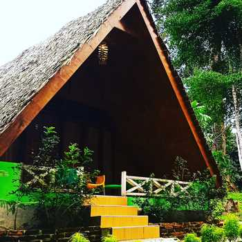 Green Forest Tangkahan Langkat - Triple Room Only Regular Plan