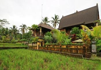 Suari's Villa Kokokan Petulu Ubud
