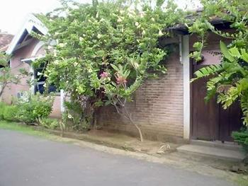 Joglo Putu Inten Jepara - Villa Begonia Regular Plan