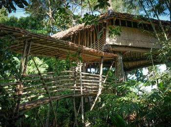 Bukit Raya Guesthouse Palangka Raya - Villa Rumah Pohon Regular Plan