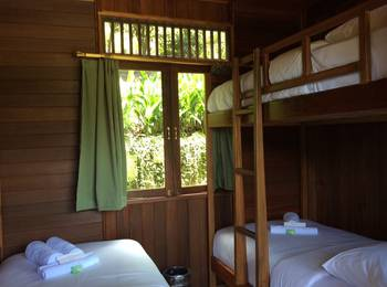 Botanica Nature Resort Bitung - Cannarium Single Room Regular Plan