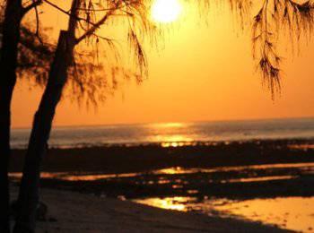 Seri Resort Gili Meno Lombok - Suite Double Garden View Regular Plan