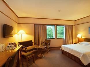 Elmi Hotel Surabaya - KAMAR DELUXE TIDAK TERMASUK MAKAN PAGI Promo PDKT