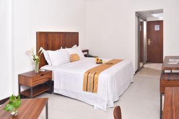 Metro Park View Hotel Kota Lama Semarang (FKA Metro Hotel) Semarang - Deluxe Executive Room Only Basic Deals