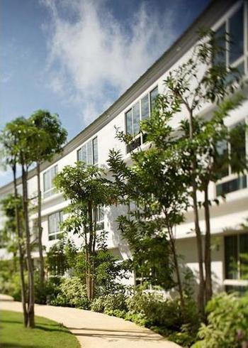 Amara Sanctuary Resort Sentosa - Deluxe Room, Garden/Sea View Pesan lebih awal dan hemat 35%