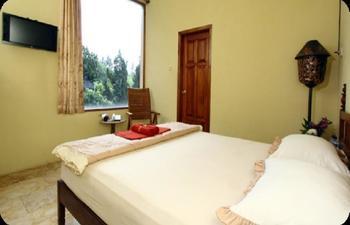 Padi Heritage Hotel Malang - Standard Pegipegi Rayakan Kemerdekaan
