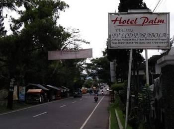 Palm Hotel Puncak