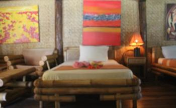 Dolphin Lodge Sekotong Lombok - Deluxe Twin Room With Fan Minimum stay 2 night Nyepi