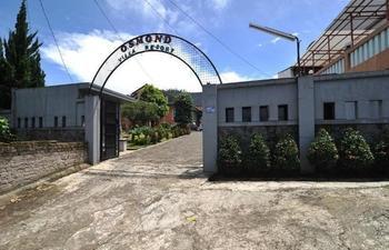 Osmond Villa & Resort