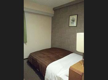 Ueno First City Hotel Tokyo - Kamar Double Basic, 1 Tempat Tidur Double, smoking, lemari es Regular Plan