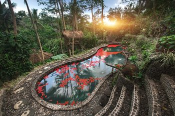 Bali Dacha