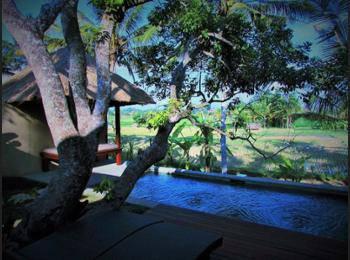 Temuku Villas Ubud - Vila, 1 kamar tidur (Rice Field View) Hemat 14%