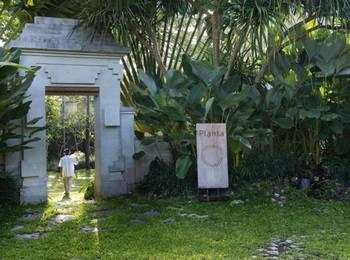 Planta Luxury Villa Canggu