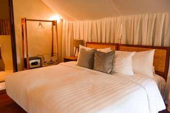 Oak Tree Glamping Resort Malang - Deluxe Glamping King Regular Plan