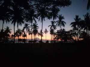 Lendang Homestay Lombok - VIEW