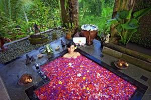 The Mahogany Villa Bali - Kamar mandi