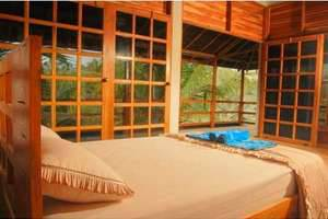 Paddy City Resort Malang - Cottage samping kolam renang