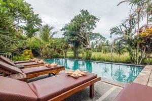 ZenRooms Ubud Singakerta Bali - Kolam Renang