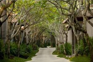 Kayana Seminyak - Tree lined Pathway