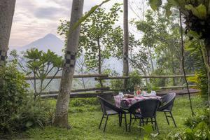 Rumah Boedi Private Residence Borobudur Magelang - Garden view