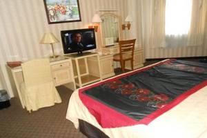 Hotel Dyan Graha Pekanbaru - Kamar tamu