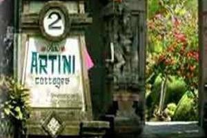 Artini 2 Cottages Bali - Tampilan Luar