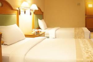 Hotel Tunjungan Surabaya - Deluxe Premiere