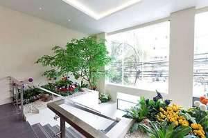 Everyday Smart Hotel Jakarta - Pintu Masuk