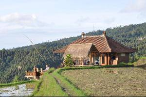 Puri Lumbung Cottages Bali - Property Grounds