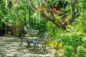 Dusun Jogja Village Inn Jogja - Garden