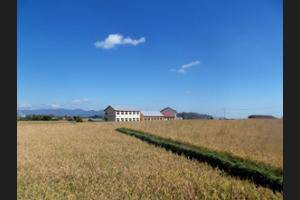 FX 72 Hotel Ruteng Ruteng - Property Grounds
