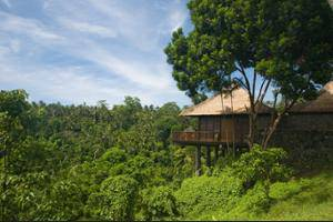 Alila Ubud - Guestroom View